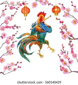 New year cock and blooming apricot on white background. Watercolor