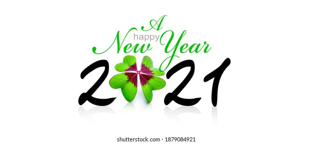 New year wish for 2021 with clover leaf 3D-Illustraion