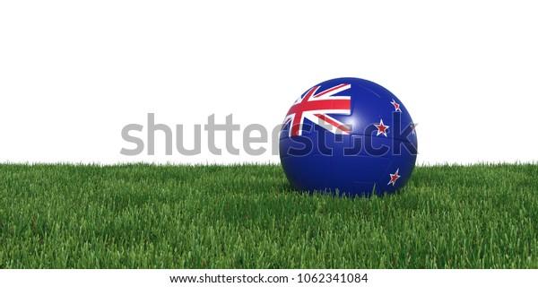 New Zealand New Zelandian flag soccer ball lying in grass, isolated on white background. 3D Rendering, Illustration.