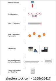 Next generation Sequencing Work Flow