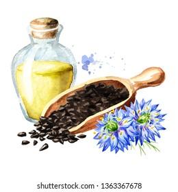 Nigella sativa or black cumin, blackseed, black caraway,  Bunium persicum oil. Watercolor hand drawn illustration  isolated on white background