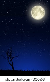 Night landscape with big moon, a silhouette of a tree tree and a blue sky covered of stars