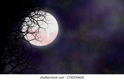 Night scene in full Moon night over fantasy stars and sky.