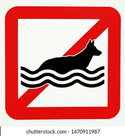 No dogs allowed in water. No swimming. Prohibition sign.