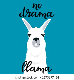 No drama llama hand drawn lettering. Adorable alpaca shows teeth. Portrait of smiling guanaco.