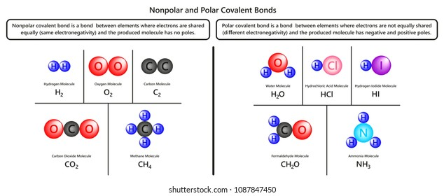 Methane images stock photos vectors shutterstock nonpolar and polar covalent bonds infographic diagram with examples of hydrogen oxygen carbon dioxide methane water urtaz Choice Image