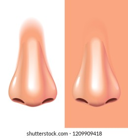 Nose isolated on white photo-realistic illustration