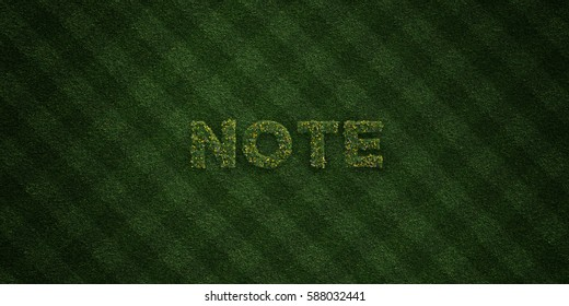 NOTE - fresh Grass letters with flowers and dandelions - 3D rendered royalty free stock image. Can be used for online banner ads and direct mailers.