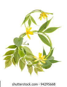Number eight from branches, leaves and yellow flowers