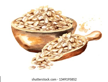 Oat flakes in bowl and scorp. Watercolor hand drawn illustration  isolated on white background