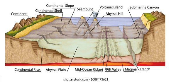 The ocean floor, sea floor, underwater relief, earth's oceans, bathymetry, geography, geology, continental shelf, slope and rise, abyssal plain and hill, trench, magma, volcanic island