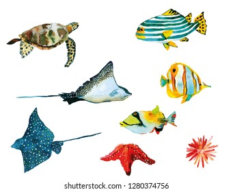Oceanic creature watercolor set illustration. Underwater hand painted multicolored coral fishes,  turtle, sting ray, starfish etc.