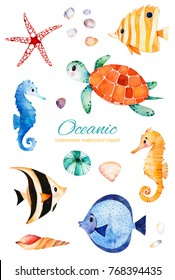 Oceanic creature watercolor set. Underwater hand painted multicolored coral fishes.seahorse,turtle etc!Perfect for invitations,party decorations,printable,craft project,greeting cards,blogs,stickers