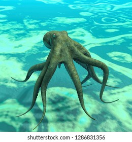 octopus  at the bottom of the sea 3D illustration