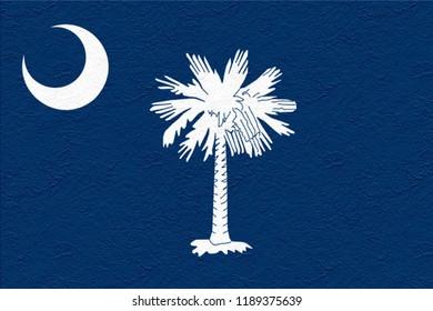 oil paint national flag of South Carolina