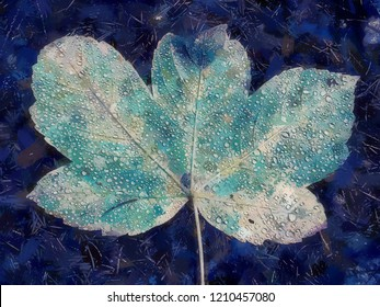 Oil painting effect. Shine rain drops on fallen maple leaf. Reflection in drops. Big yellow green maple leaf broken by strong wind.