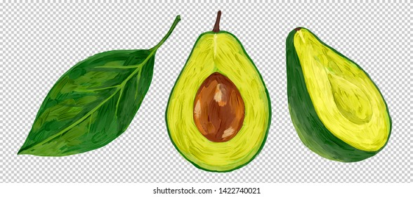 Oil painting style raster half-cut fresh avocado with green leaf isolated on transparency grid imitation background.