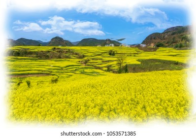 Oil painting The Yellow Flowers of Rapeseed fields and houses on the hill with blue sky at Luoping, small county in eastern Yunnan, China. digital art painting