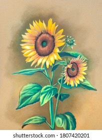 Oil pastel painting of some sunflowers in full bloom. Traditional illustration on paper.