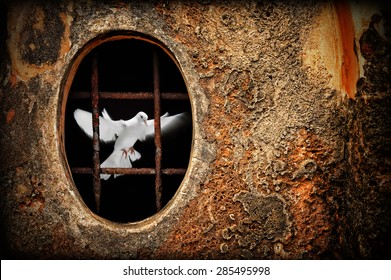 Old dungeon and white dove as symbol of freedom illustration