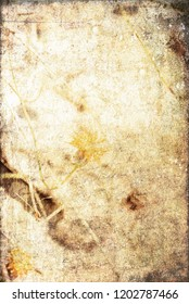 Old Manuscript Layered with Wildflowers & Textures for Graphic Design, Background, Book Covers, & Invitations