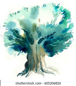 Old olive tree, watercolor painting