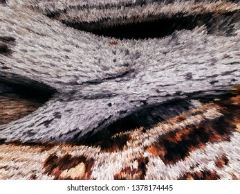 Old white wood log texture illustration graphic art close up rough wood texture - Abtract nature tecture wallpaper concept