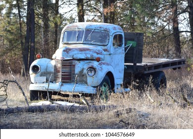 Old-time truck sits abandoned in wooded area.