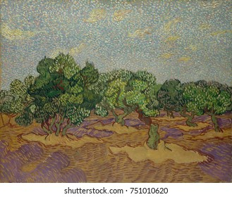 Olive Trees, by Vincent Van Gogh, 1889, Dutch Post-Impressionist, oil on canvas. The work was painted directly from nature, but in a highly stylized manner, incorporating pointillist broken color