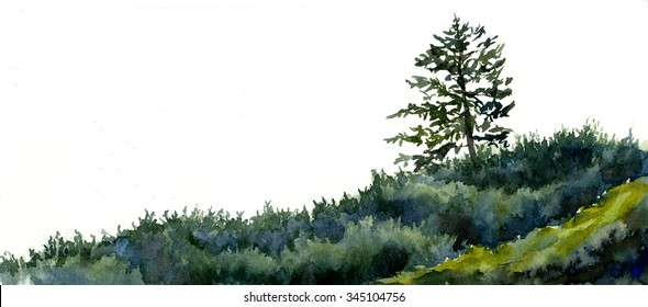 One Fir Tree with Beach Shrubs hand painted watercolor of fir tree and bushes isolated in colors of green, blue green and dark green