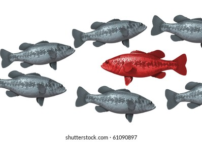 One red fish swims against the rest