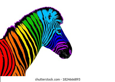 One zebra head with rainbow color striped pattern skin on white background isolated closeup side view, different concept, imagination design, individuality symbol, surreal decoration, art trendy print