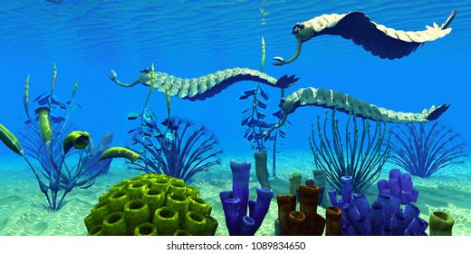 Opabinia in Cambrian Seas 3D illustration - Three Opabinia regalis animals hunt for prey on a reef of Cambrian Seas in the Paleozoic Era.