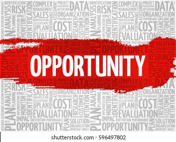 Opportunity and success word cloud, business concept
