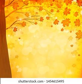 orange autumn maple leaves natural tree background