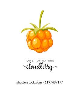 Orange cloudberry berry flat icon with inscription. Raster version illustration.