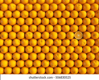 Orange fruit background. 3D illustration. High quality