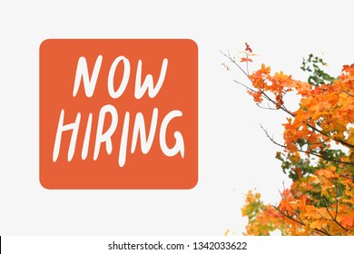 Orange and Green Maple Tree and Now Hiring Logo