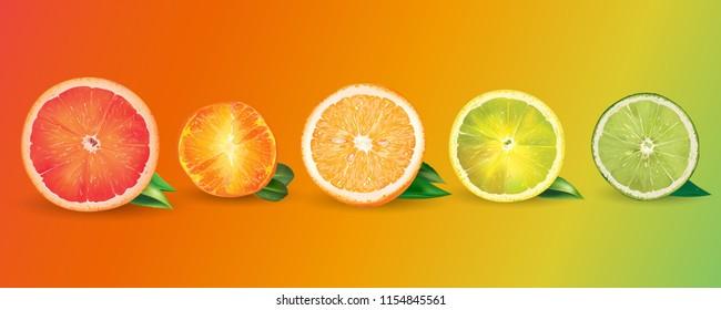 Orange, lemon, citrus, mandarin, grapefruit and lime