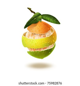 Orange, lemon, lime peel wound around a orange fruit against white background illustration.
