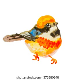 Orange little bird watercolor. Bird is suitable for cards, invitations to a celebration, wedding invitations, for patterning textile printing on paper.