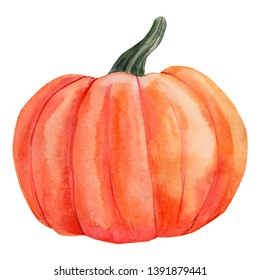 orange pumpkin on an isolated white background, watercolor illustration, Hand painted, halloween