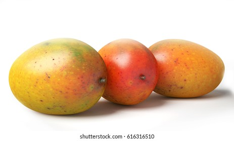 Orange, Red and Yellow Mangoes on a White Studio Background.  3D Rendering