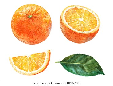 Orange, slice of orange and leaf.  Watercolor.