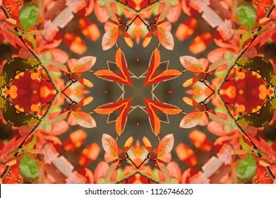orange with yellow autumnal pattern kaleidoscope