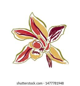 orchid flower illustration digital artsy style