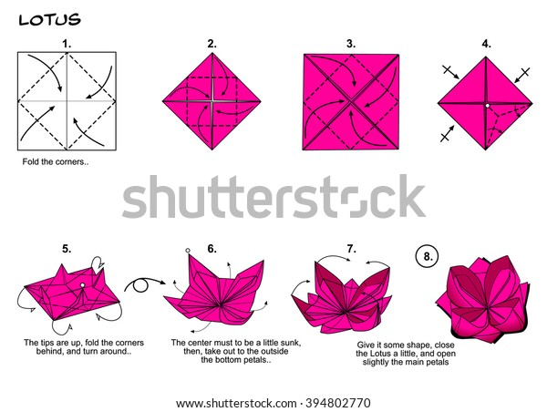 Origami Traditional Flower Lotus Diagram Instructions Stock ... on