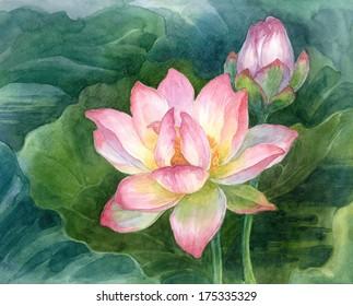 Original art, watercolor panting of lotus.