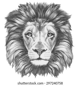 Original drawing of Lion. Isolated on white background.