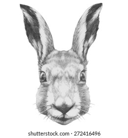 Original drawing of Rabbit. Isolated on white background